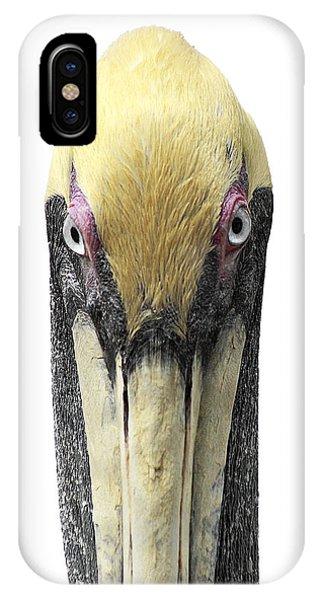Brown Pelican-2 IPhone Case