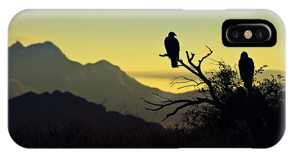 Condor iPhone Case - By Dawn's Early Light  by Saija  Lehtonen