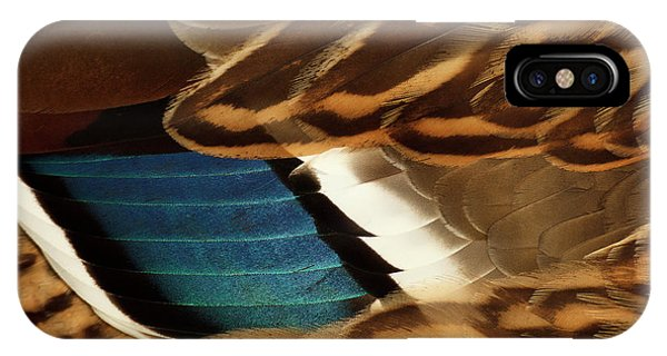 Anas Platyrhynchos iPhone Case - Canada, British Columbia, George C by Rick A Brown