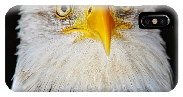 Closeup Portrait Of An American Bald Eagle IPhone Case
