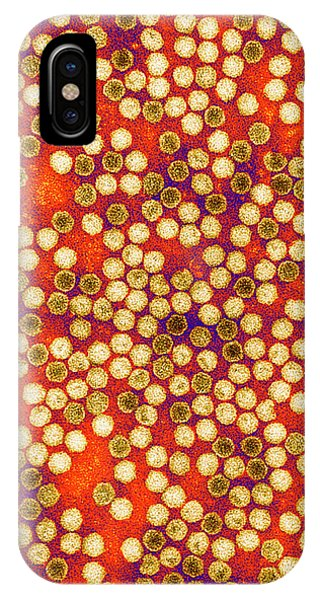 Mottled iPhone Case - Cocksfoot Mottle Virus by Centre For Bioimaging, Rothamsted Research/science Photo Library