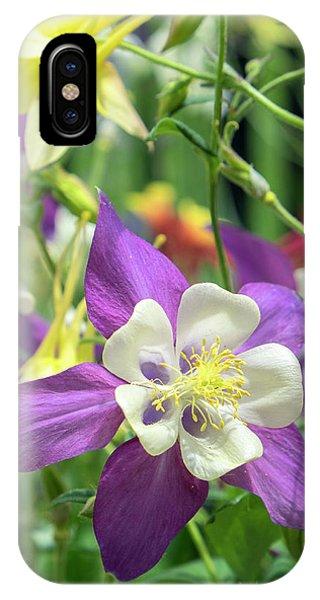 Aquilegia iPhone Case - Columbine Flowers, Usa by Lisa S. Engelbrecht