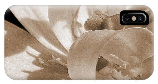 Double Late Tulip Named Angelique IPhone Case