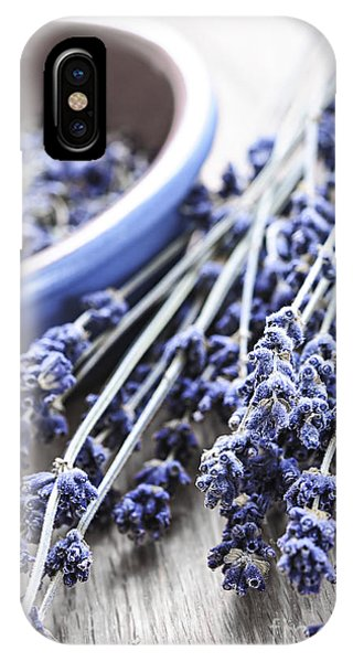 Lavender iPhone Case - Dried Lavender by Elena Elisseeva