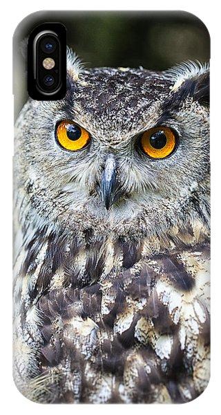 Eagle Owl IPhone Case