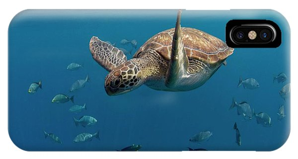 Green Turtle Swimming Phone Case by Peter Scoones/science Photo Library