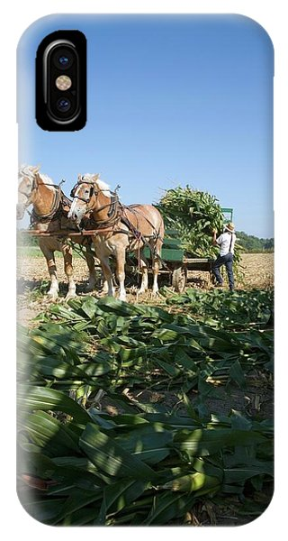 Amish Country iPhone Case - Harvest On An Amish Farm by Jim West