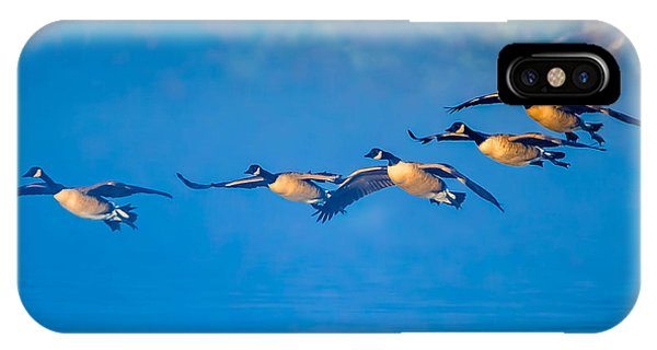 Incoming Geese IPhone Case