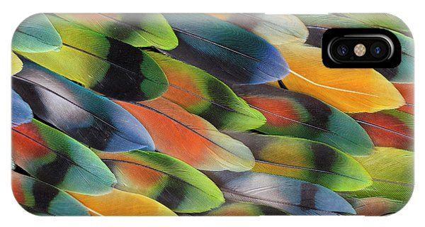 Lovebird iPhone Case - Lovebird Tail Feather Pattern And Design by Darrell Gulin