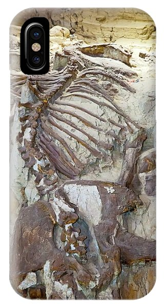 Mammoth Hot Springs iPhone Case - Mammoth Fossil by Jim West