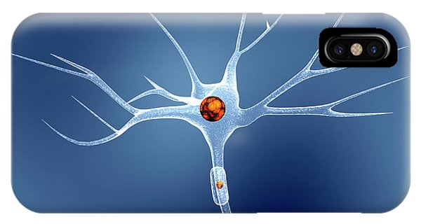 Nerves iPhone Case - Nerve Cell by Pasieka