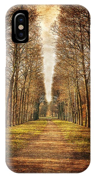 IPhone Case featuring the photograph Path In The Woods / Versailles by Barry O Carroll