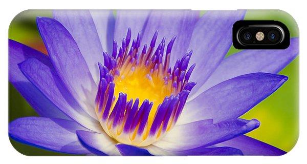 Pupukea Garden Breeze  IPhone Case