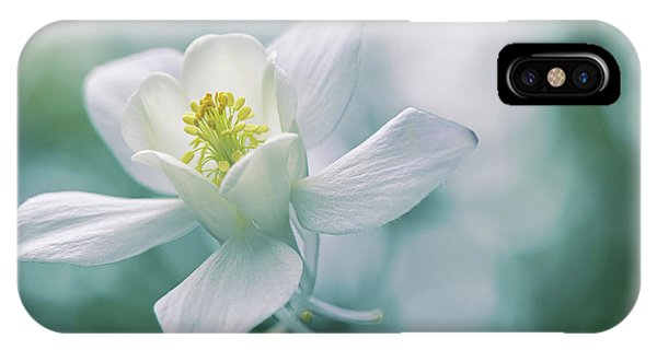 Flower Gardens iPhone Case - Purity by Jacky Parker