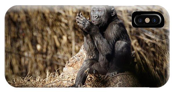 Quiet Juvenile Gorilla IPhone Case