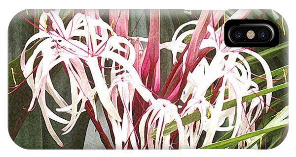 Queen Emma Crinum Lilies IPhone Case