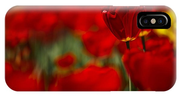 Tulip iPhone X / XS Case - Red And Yellow Tulips by Nailia Schwarz