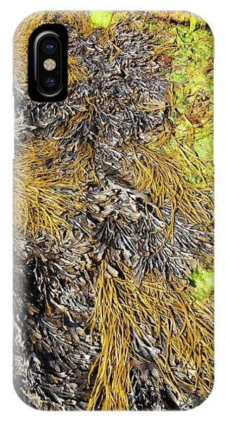 Rock Formations At The Bay Of Laig IPhone Case
