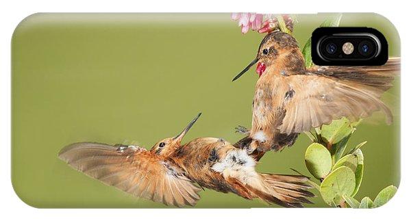 Shining Sunbeam Hummingbirds IPhone Case