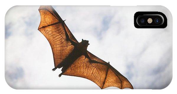 Spooky Bat IPhone Case