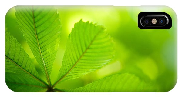 Soft Focus iPhone Case - Spring Green by Nailia Schwarz