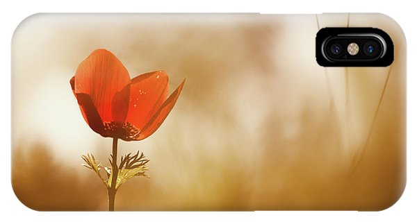 Flower Gardens iPhone Case - Untitled by Keren Or