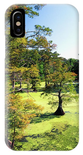 Bald Cypress iPhone Case - Usa, Tennessee, Reelfoot National by Adam Jones