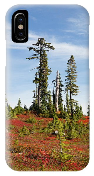 Alpine Meadows iPhone Case - Usa, Washington State, Mount Baker by Jamie and Judy Wild