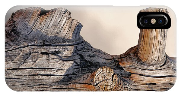 Wooden Landscape IPhone Case