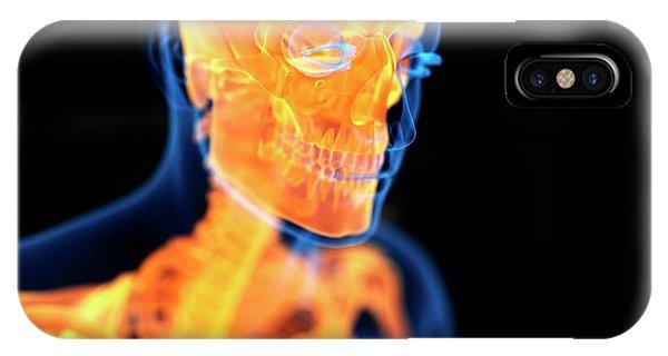 Human Skull Phone Case by Sebastian Kaulitzki