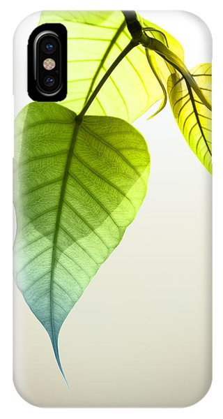 Pho Or Bodhi IPhone Case