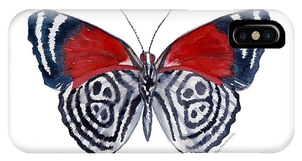 Moth iPhone Case - 37 Diathria Clymena Butterfly by Amy Kirkpatrick