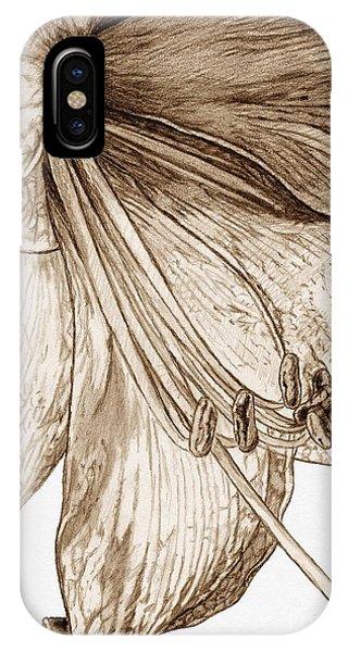 iPhone Case - Amaryllis by J McCombie