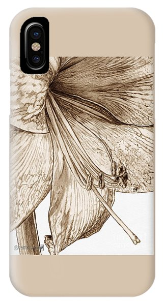 Close Up Floral iPhone Case - Amaryllis by J McCombie