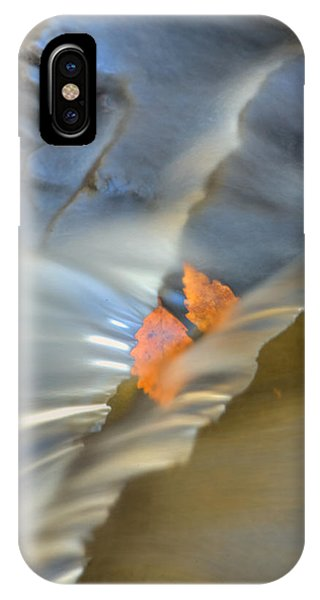 Autumn Color Caught In Time IPhone Case