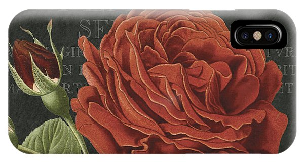 Rosa iPhone Case - Bella Rosa Square by MGL Meiklejohn Graphics Licensing