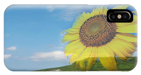 Sunflower Facing The Oceans  IPhone Case