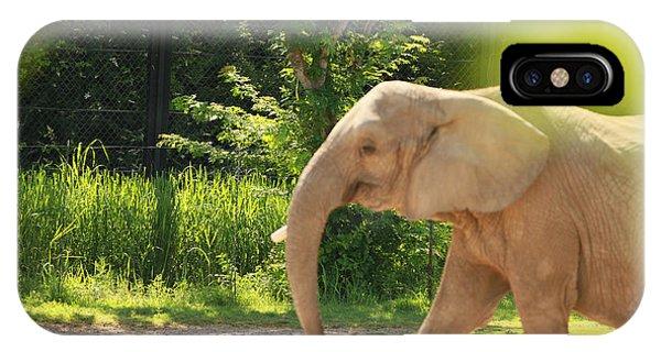Elephant Phone Case by Tinjoe Mbugus