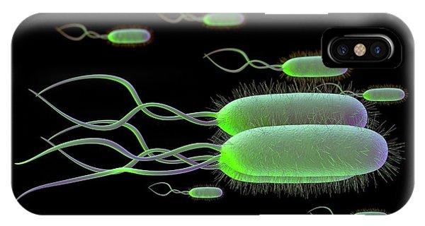 Helicobacter Pylori Bacteria IPhone Case