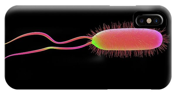 Helicobacter Pylori Bacterium IPhone Case