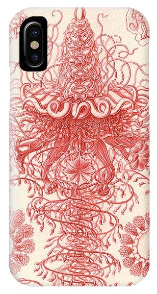 Illustration Shows Marine Invertebrates. Siphonophorae Phone Case by Artokoloro