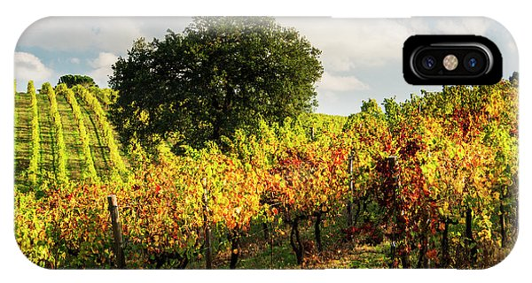 Italy, Tuscany, Chianti, Autumn Phone Case by Terry Eggers