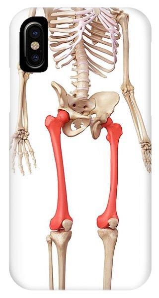 Leg Bones Phone Case by Sebastian Kaulitzki/science Photo Library