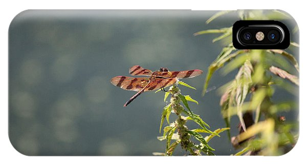 Red Dragonfly IPhone Case