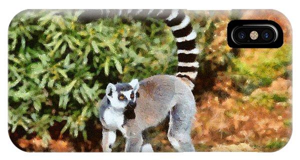 Ring-tailed Lemur iPhone Case - Ring Tailed Lemur by George Atsametakis