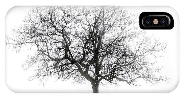 Winter Tree In Fog IPhone Case