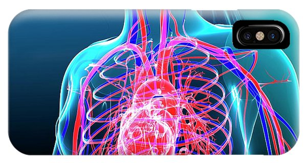 Human Cardiovascular System Phone Case by Pixologicstudio/science Photo Library