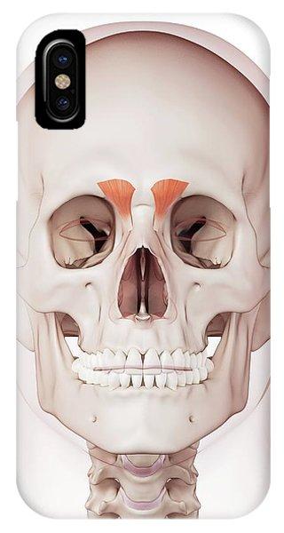 Human Facial Muscles Phone Case by Sebastian Kaulitzki/science Photo Library
