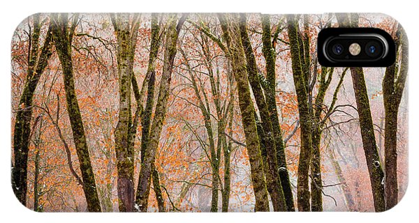 Deciduous iPhone Case - Black Oaks In Winter, Yosemite Valley by Russ Bishop