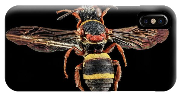 Cuckoo iPhone Case - Cuckoo Bee by Us Geological Survey